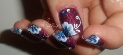 fleur bleue (1)