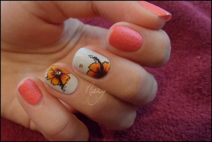 fleurs hibiscus et sable rose (3)