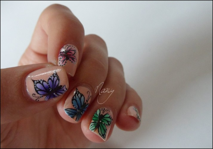 Papillons de couleurs (1)