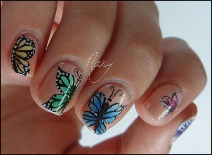 Papillons de couleurs (2)