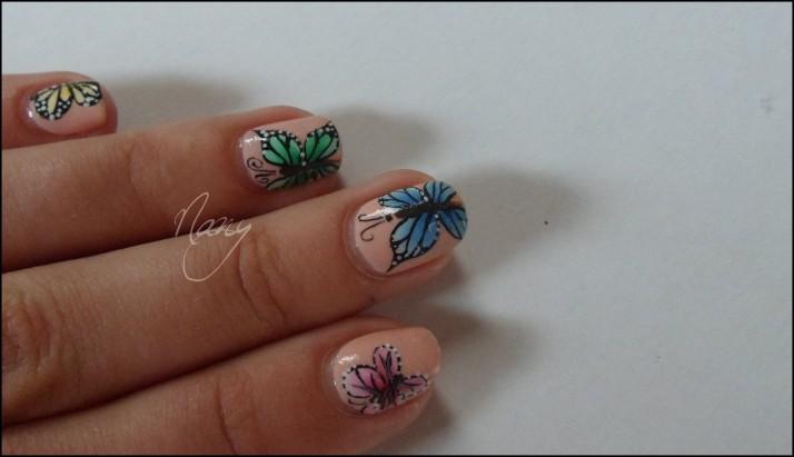 Papillons de couleurs (3)