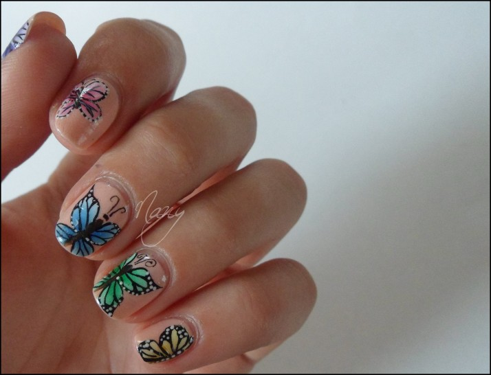 Papillons de couleurs (4)